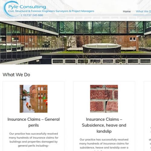 Pyle Consulting