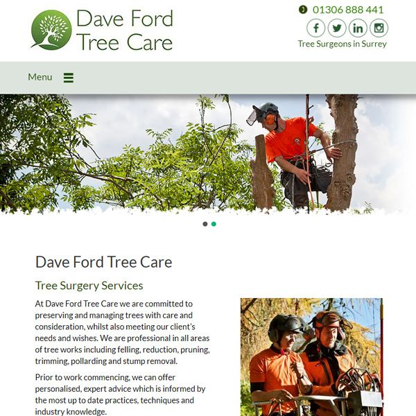 Dave Ford Tree Care - Tree Surgery Services